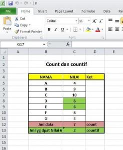 Count dan Countif pada Excel