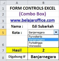Combo Box Excel