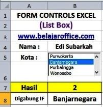 List Box Excel