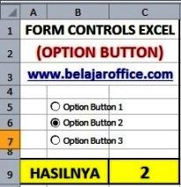 Option button excel
