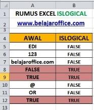 RUMUS EXCEL ISLOGICAL