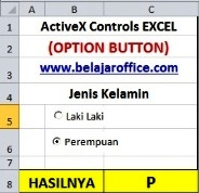 Option Button ActiveX Controls