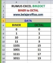 RUMUS EXCEL BIN2OCT