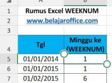 Rumus Excel WEEKNUM