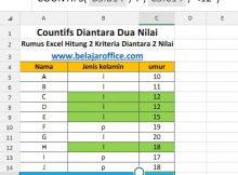 Rumus Excel Hitung Dua Kriteria Diantara 2 Nilai