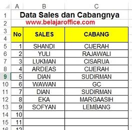 data-sales-dan-cabang