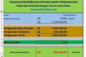 Aplikasi Kalkulator Zakat Penghasilan Rumus Excel
